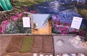 برگزاری همایش روز جهانی خاک در دانشگاه یزد