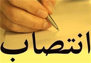 معرفی رییس نظام پیشنهادهای دانشگاه یزد و چند انتصاب دیگر